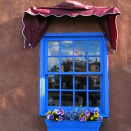 blue-window-and-flower-box-in-southwest-new-mexico-nms249