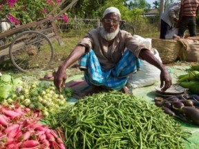 Behind The Food Price Crisis