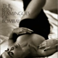 book-lostflamingoesofbombay - Copy