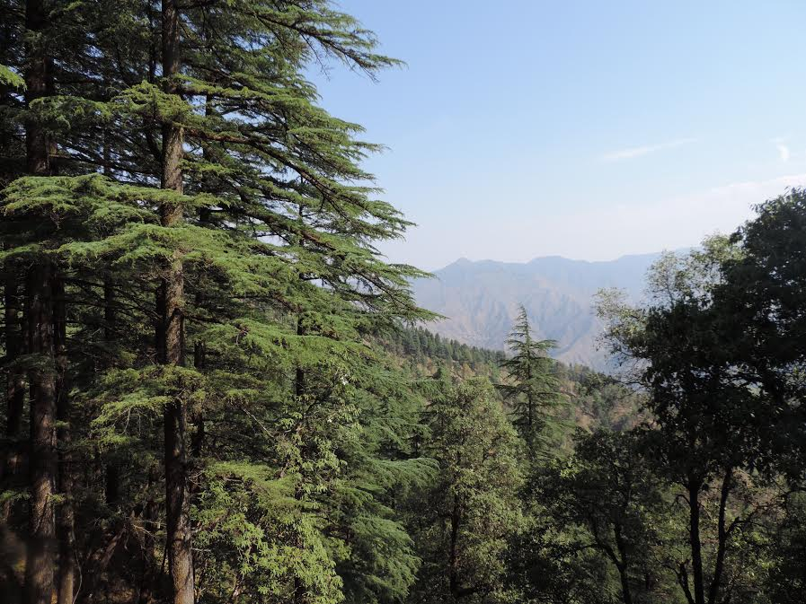 Mussoorie And Landour: The Literary Connection
